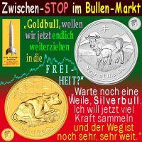 SilberRakete_Bullenmarkt-GOLD-Silber-OX-Freiheit-weiter-Weg
