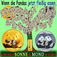 SilberRakete_Dollar-Baum-Pandas-GOLD-SILBER2