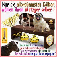 SilberRakete_Duemmste-Kaelber-waehlen-Metzger-selber-Goldman-Sachs