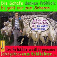 SilberRakete_EURO-Schafe-Draghi-Scheren-Schlaechter3
