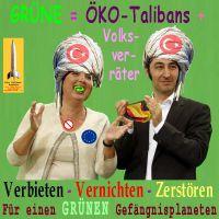 SilberRakete_GRUENE-Oeko-Volksverraeter2