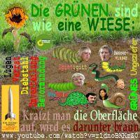 SilberRakete_GRUENE-Wiese-braunes-Ungeziefer2