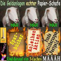 SilberRakete_Geldanlage-Papierschafe-Papiergeld-brennt-Feuer2