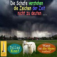 SilberRakete_Gewitter-Zeichen-der-Zeit-deuten-Schafe-Kino-Show