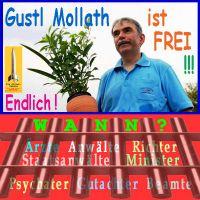 SilberRakete_Gustl-Mollath-FREI-Verantwortliche-hinter-Gitter