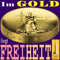 SilberRakete_Im-GOLD-liegt-Freiheit