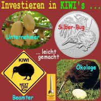 SilberRakete_Investieren-in-KIWIs