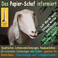 SilberRakete_Papierschaf-Geldanlage-geschoren2