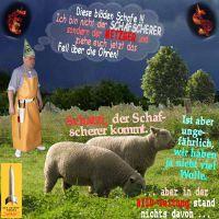 SilberRakete_Schafe-Metzger-Schafscherer-Wolle-Dollar-Euro-brennen-BILD-Zeitung