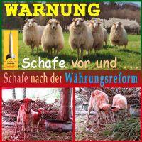 SilberRakete_Schafe-vor-nach-Waehrungsreform-Wolle-blutig
