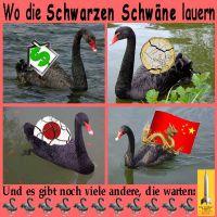 SilberRakete_Schwarze-Schwaene-USA-Haus-Dollar-EURO-Japan-Yen-China-Drache