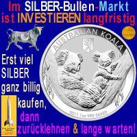 SilberRakete_Silber-Bullenmarkt-lange-warten