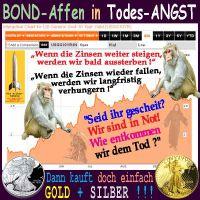 SilberRakete_US-Zinsen10Y-BondAffen-Sensenmann-GOLD-SILBER