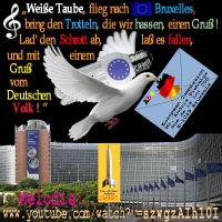 SilberRakete_WeisseTaube-Sparlampe-Bruessel-BriefD2