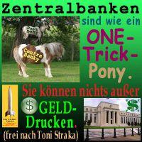 SilberRakete_Zentralbanken-One-Trick-Pony-Geld-drucken