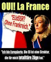 FW-frankreich-le-pen-1_627x764