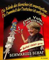 FW-merkel-schwarzes-schaf-2_627x764