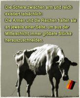 FW-mittelschicht-1_622x759