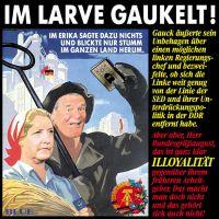 JB-IM-LARVE-GAUKELT