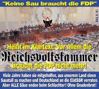 JB-KEINE-SAU-FDP