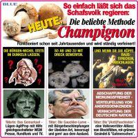 JB-METH-CHAMPIGNON