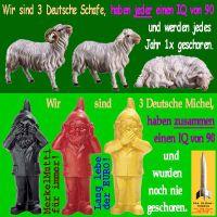 SilberRakete_3Schafe-3Michel-Zwerge-IQ90-1xJahr-geschoren-Merkel-Euro
