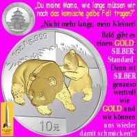 SilberRakete_China-Panda-Fell-GOLD-SILBER-Standard-wertvoll