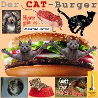 SilberRakete_Der-CAT-Burger-Meatsekatze-Katzen-Kauft-lieber-Horse-Burger2