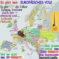 SilberRakete_Es-gibt-kein-Europaeisches-Volk-Voelker-Herkunft-Parasit-EU-EURO-D-aussaugen2