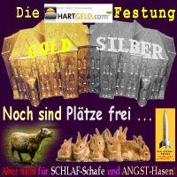 SilberRakete_HARTGELD-Festung-GOLD-SILBER-Plaetze-frei-Nicht-Schlaf-Schafe-Angst-Hasen2