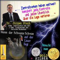 SilberRakete_JStark-EZB-BuBa-Zentralbanken-Kontrolle-verloren-Blitz-Euro-Schwarzer-Schwan-GOLD-SILBER