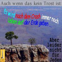 SilberRakete_Kein-Trost-nach-Crash-noch-Leben-auf-der-Erde-Baeume-Felsen-Leider-nicht-fuer-Jeden