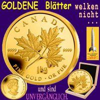 SilberRakete_Maple-1kg-GOLD-Blaetter-welken-nicht-Wert-unvergaenglich2