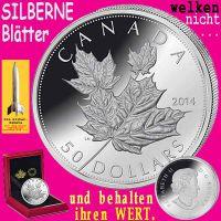 SilberRakete_Maple-50Dollar-SILBER-Blaetter-welken-nicht-behalten-Wert2