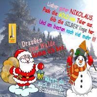 SilberRakete_Nikolaus-Schneemann-GOLD-SILBER-Liberty-Philharmoniker-Sack-Wald-Schnee3