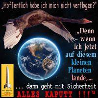 SilberRakete_Riesiger-Schwarzer-Schwan-verflogen-kleine-Erde-landen-alles-kaputt