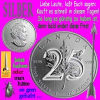 SilberRakete_SILBER-25Jahre-Maple-Leaf-guenstig-Frist-haben-gehabt