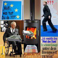 SilberRakete_Schaeuble-ermittelt-Wert-von-Euro-Ofen-Brennwert-Braunkohle-Merkel-ruft