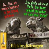 SilberRakete_Schafe-Urlaub-Weide-Fehleinschaetzung-Schlachthof2