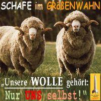 SilberRakete_Schafe-im-Groessenwahn-Wolle-gehoert-nur-uns-selbst2
