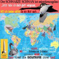 SilberRakete_Schwarzer-Schwan-orientierungslos-Weltkarte-viele-Landebahnen-WO-WANN-Katastrophe2