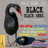 SilberRakete_SchwarzerSchwan-Name-BlackSwan-Auftrag-Ereignis-Herrschende-Klasse-ausloeschen-Erde-Schatten2