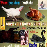 SilberRakete_ThanksGiving-2014-Truthahn-gebraten-verbrannt-SchwarzerSchwan-USA-Ende-nah