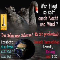 SilberRakete_Wer-fliegt-so-spaet-durch-Nacht-und-Wind-SchwarzerSchwan-geschwind-Muehe-Erde-dann-Armut-Krieg-Tod