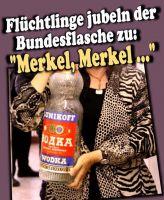 FW-merkel-2015a