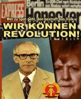 FW-revolution-ddr-1a