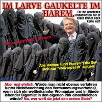 JB_LARVE_IM_HAREM