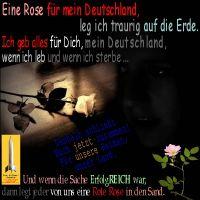 SilberRakete_AnnettM-Rose-fuer-Deutschland-traurig-Erde-zusammen-Heimat-erfolgReich-RoteRose-Sand2