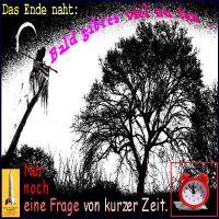 SilberRakete_Baum-Das-Ende-naht-Tod-bald-viel-zu-tun-Kurze-Zeit-5vor12-Wecker