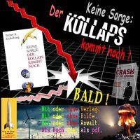 SilberRakete_Buch-WE-Keine-Sorge-Der-Kollaps-kommt-noch-Verlag-Anwalt-Hiilfe-Buch-PDF-Crash-bald-Windenergie-Flugzeug-Pilz